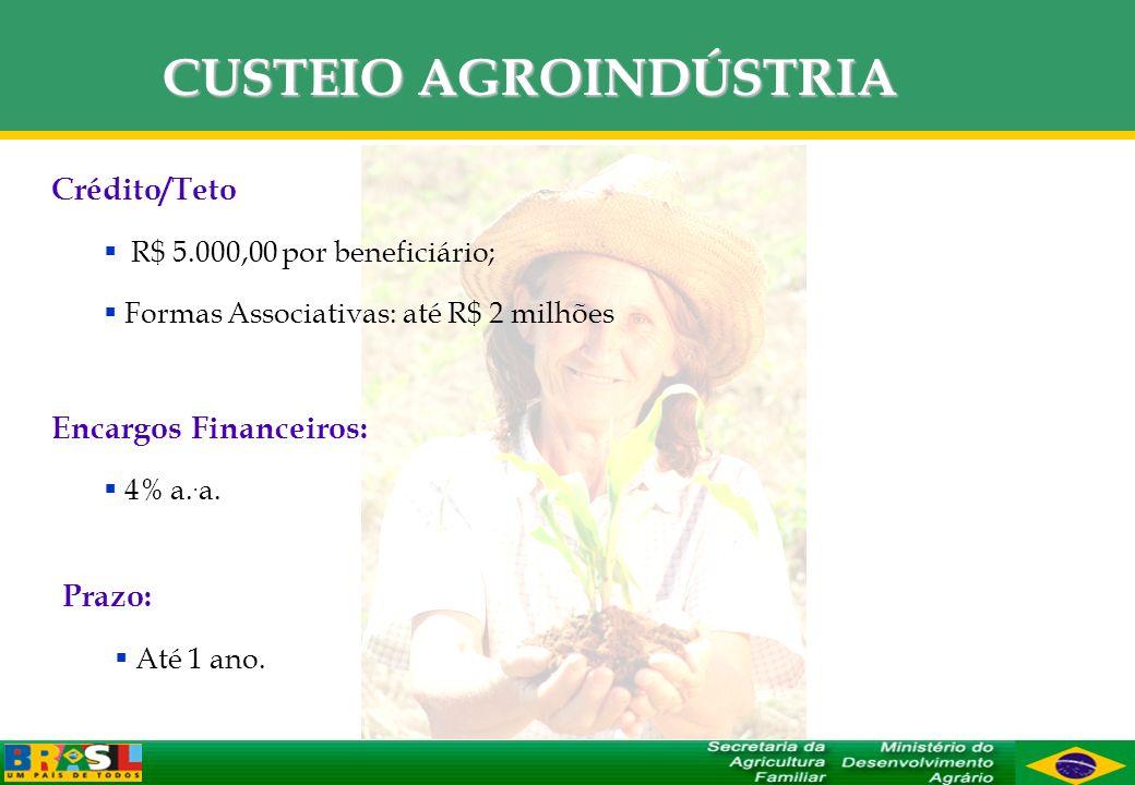 CUSTEIO AGROINDÚSTRIA