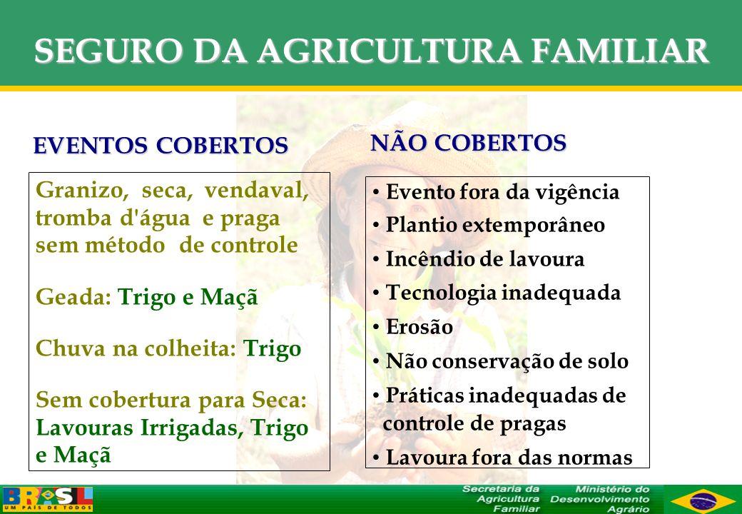 SEGURO DA AGRICULTURA FAMILIAR