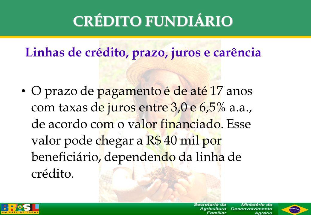 Linhas de crédito, prazo, juros e carência