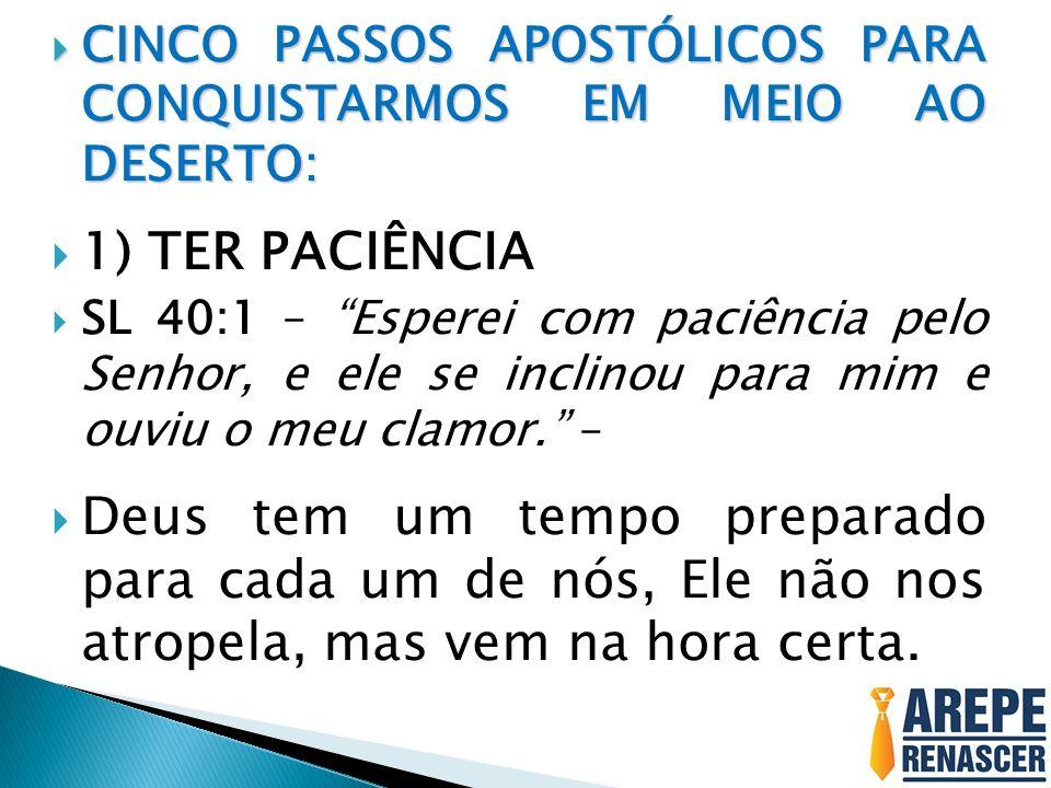 CINCO PASSOS APOSTÓLICOS PARA CONQUISTARMOS EM MEIO AO DESERTO: