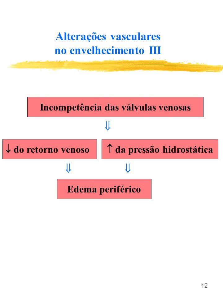 Alterações vasculares no envelhecimento III