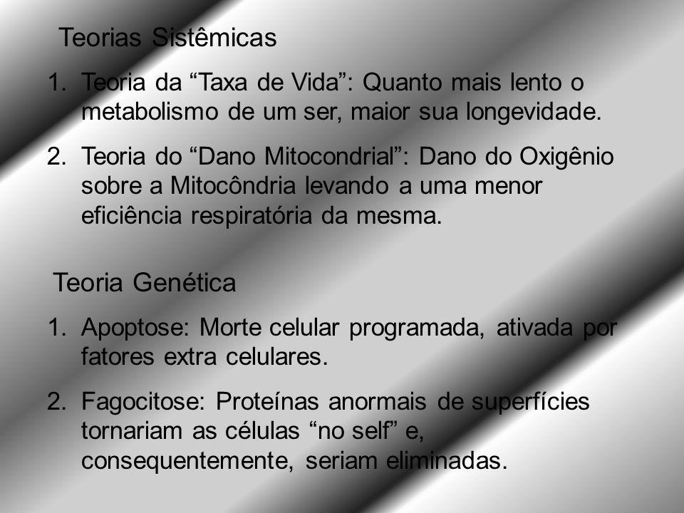 Teorias Sistêmicas Teoria Genética