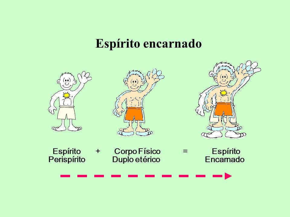 Espírito encarnado Perispírito Duplo etérico Encarnado