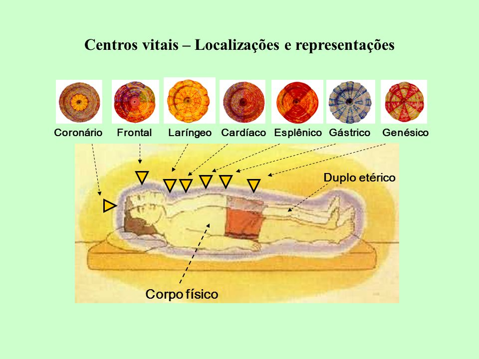 Centros vitais – Localizações e representações