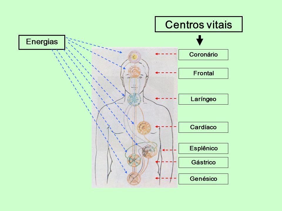 Centros vitais Energias Coronário Frontal Laríngeo Cardíaco Esplênico