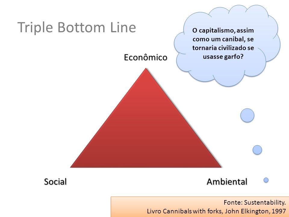 Triple Bottom Line Econômico Social Ambiental