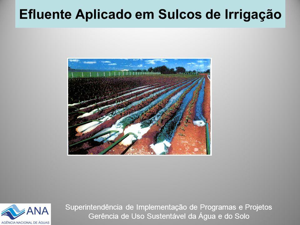 Efluente Aplicado em Sulcos de Irrigação