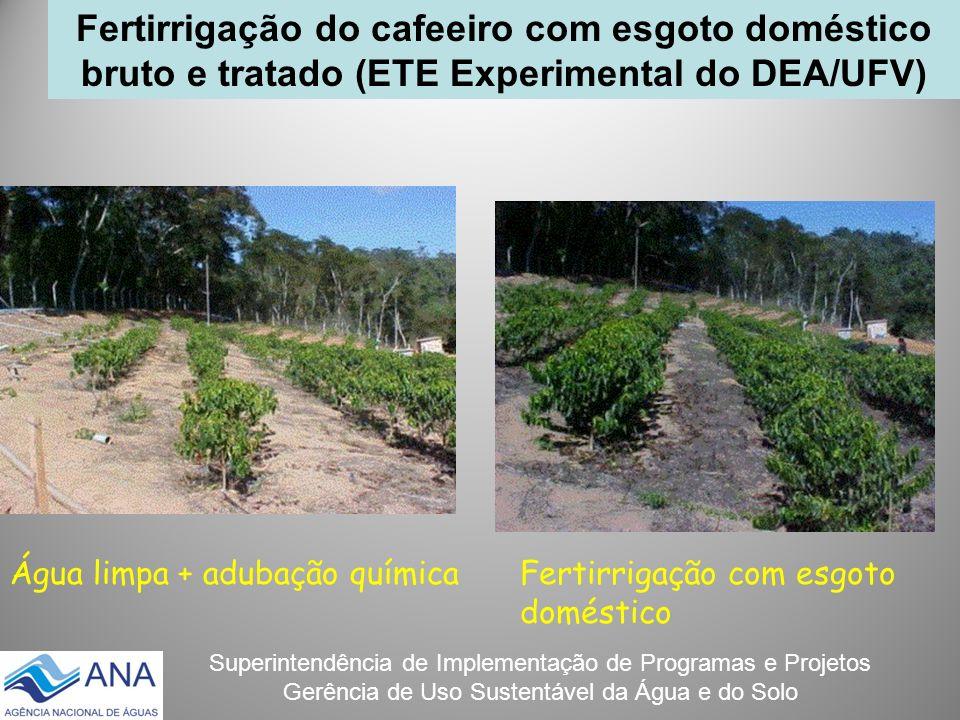 Fertirrigação do cafeeiro com esgoto doméstico bruto e tratado (ETE Experimental do DEA/UFV)