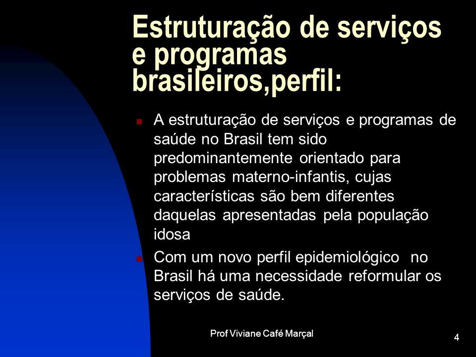 Estruturação de serviços e programas brasileiros,perfil:
