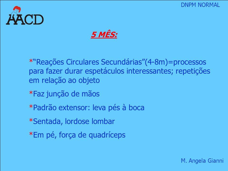 5 MÊS: Reações Circulares Secundárias (4-8m)=processos para fazer durar espetáculos interessantes; repetições em relação ao objeto.