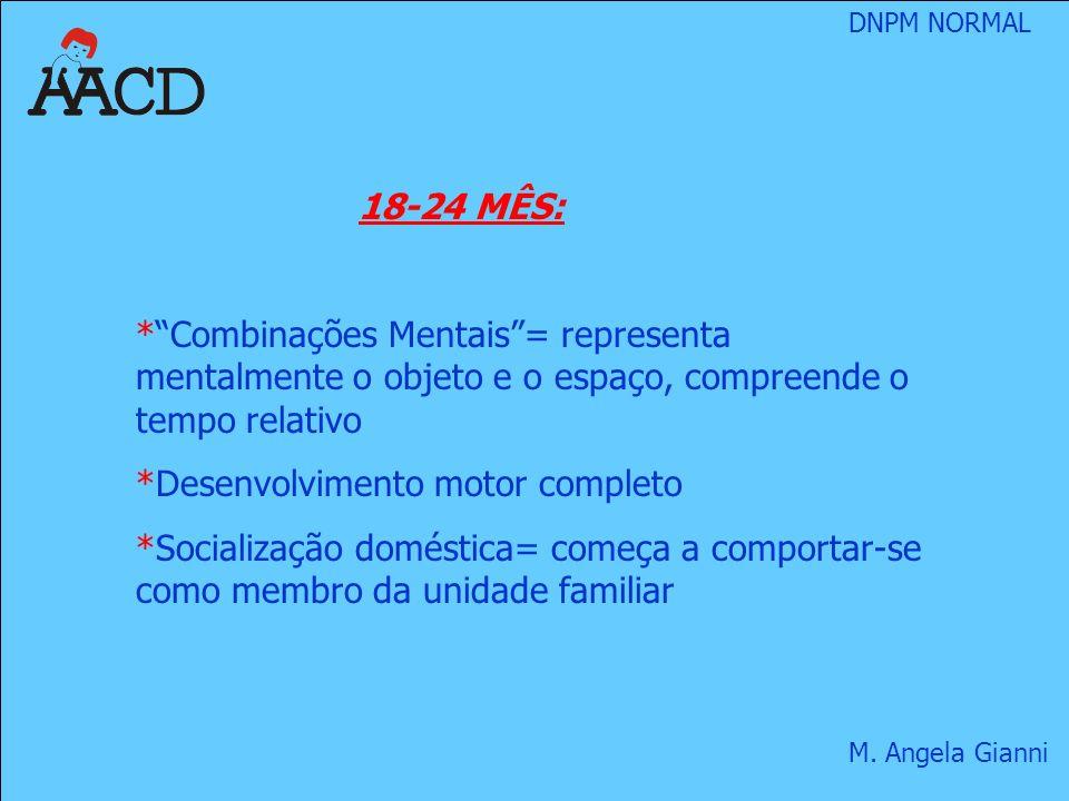 18-24 MÊS: Combinações Mentais = representa mentalmente o objeto e o espaço, compreende o tempo relativo.