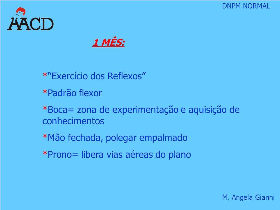 1 MÊS: Exercício dos Reflexos Padrão flexor. Boca= zona de experimentação e aquisição de conhecimentos.