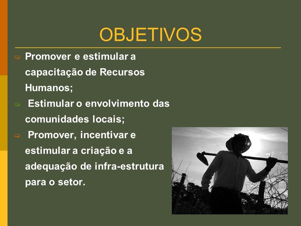 OBJETIVOS Promover e estimular a capacitação de Recursos Humanos;