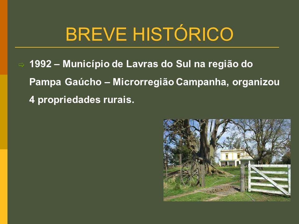 BREVE HISTÓRICO 1992 – Município de Lavras do Sul na região do Pampa Gaúcho – Microrregião Campanha, organizou 4 propriedades rurais.