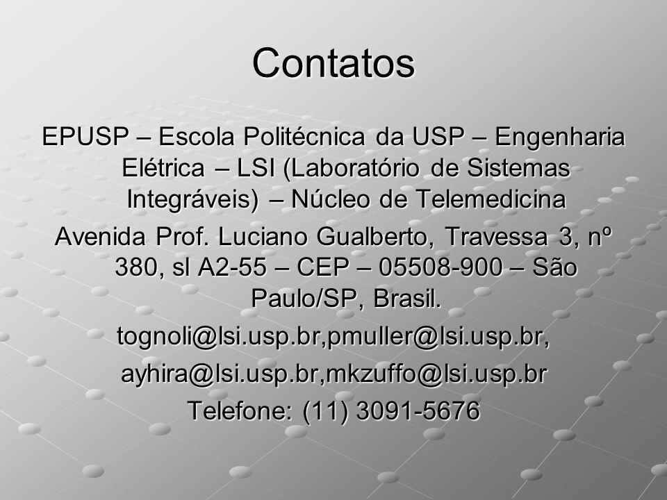tognoli@lsi.usp.br,pmuller@lsi.usp.br,