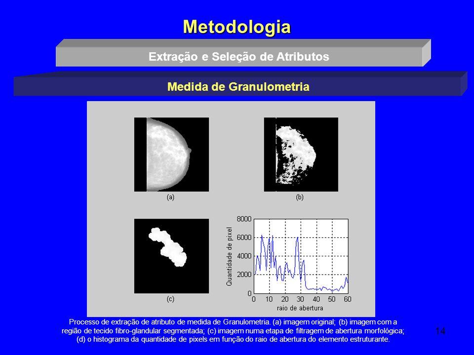 Extração e Seleção de Atributos Medida de Granulometria