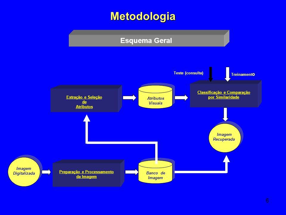Classificação e Comparação Preparação e Processamento