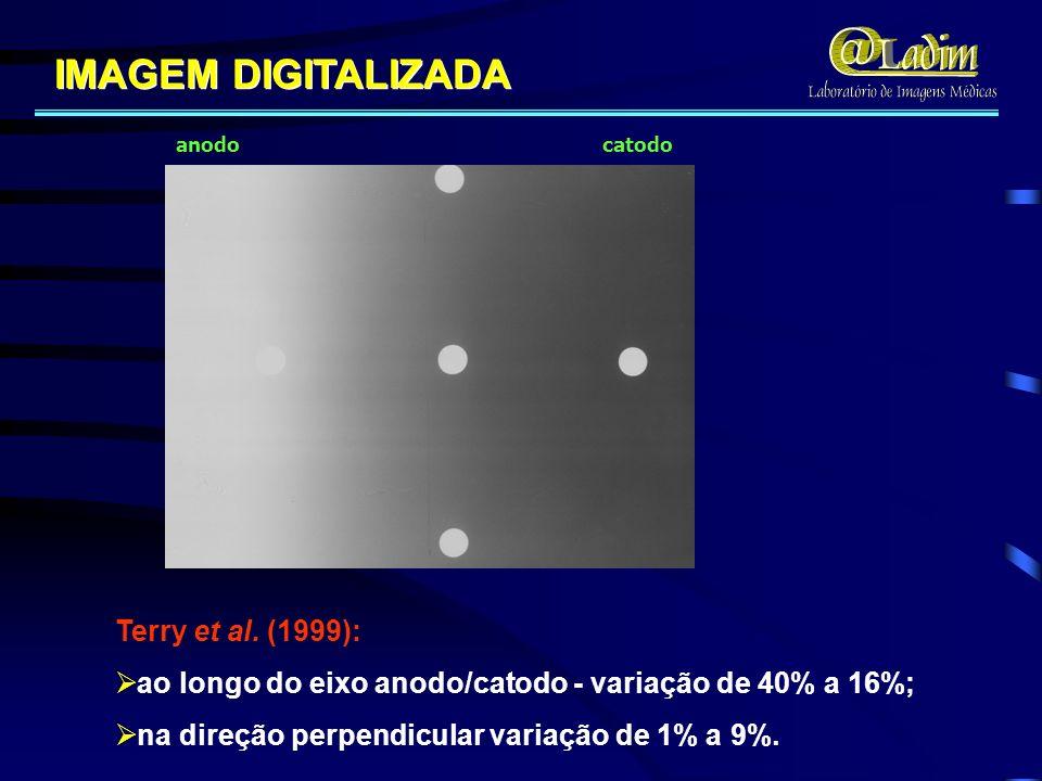 IMAGEM DIGITALIZADA Terry et al. (1999):