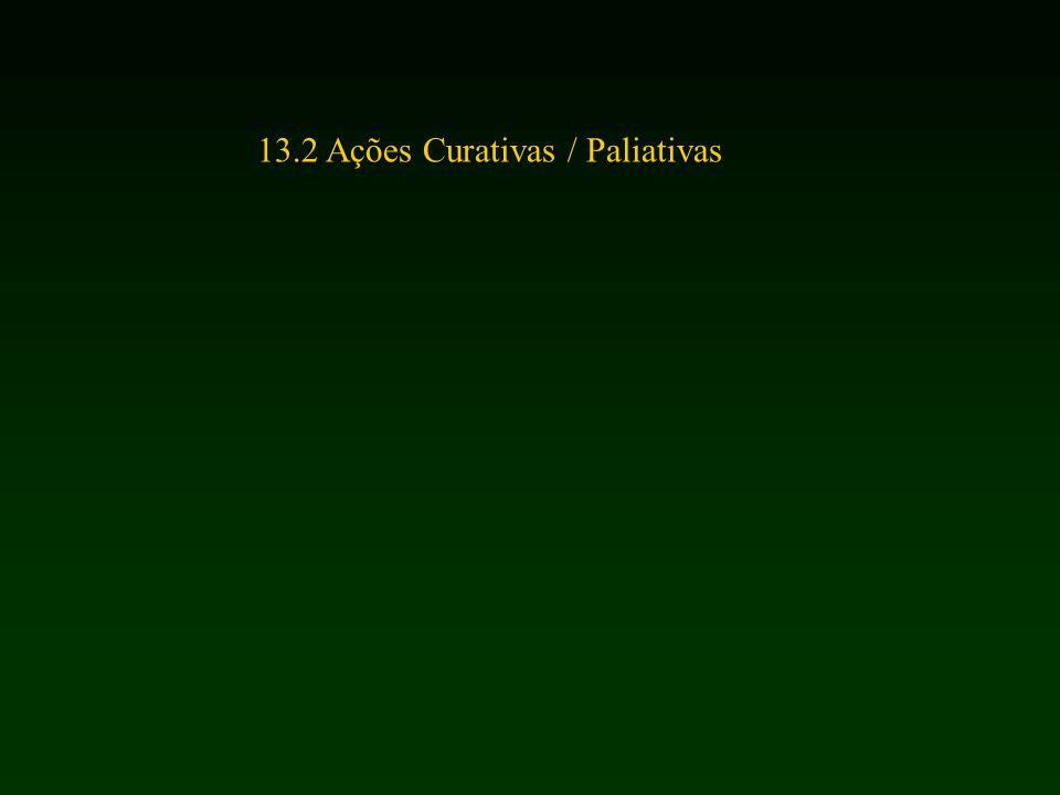 13.2 Ações Curativas / Paliativas