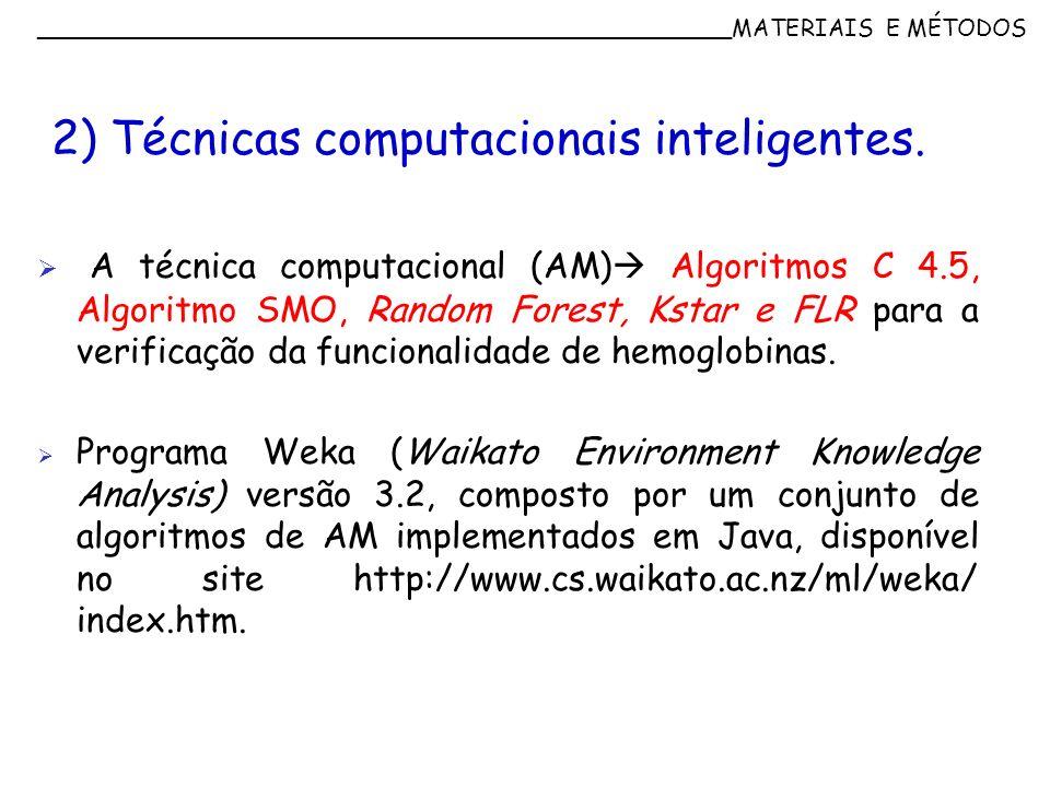 2) Técnicas computacionais inteligentes.