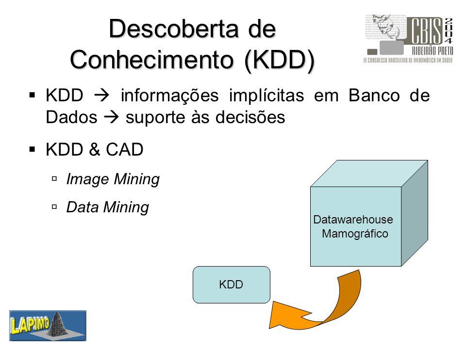 Descoberta de Conhecimento (KDD)