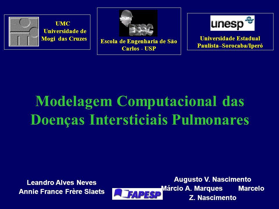 Modelagem Computacional das Doenças Intersticiais Pulmonares
