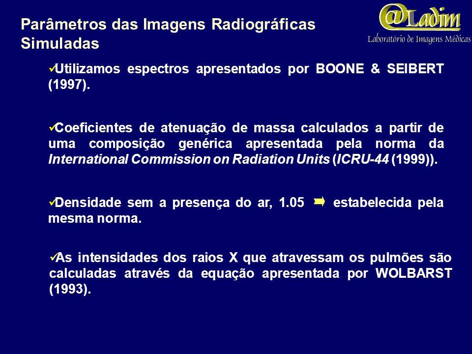 Parâmetros das Imagens Radiográficas Simuladas