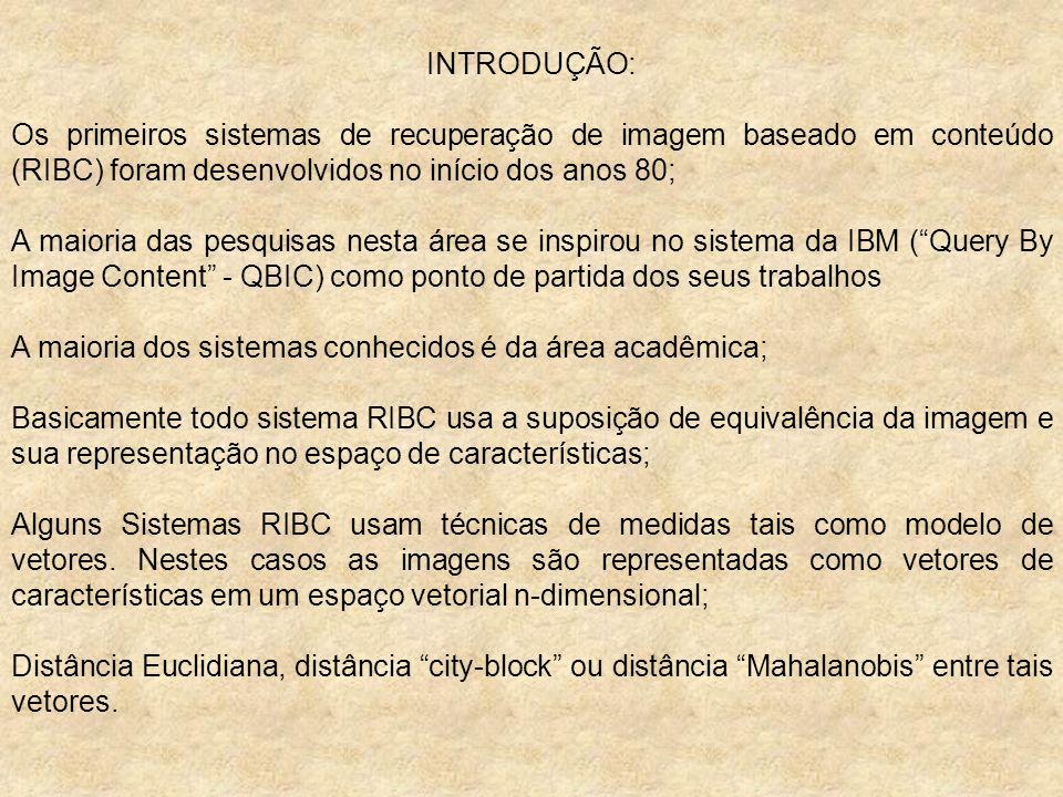 INTRODUÇÃO: Os primeiros sistemas de recuperação de imagem baseado em conteúdo (RIBC) foram desenvolvidos no início dos anos 80;