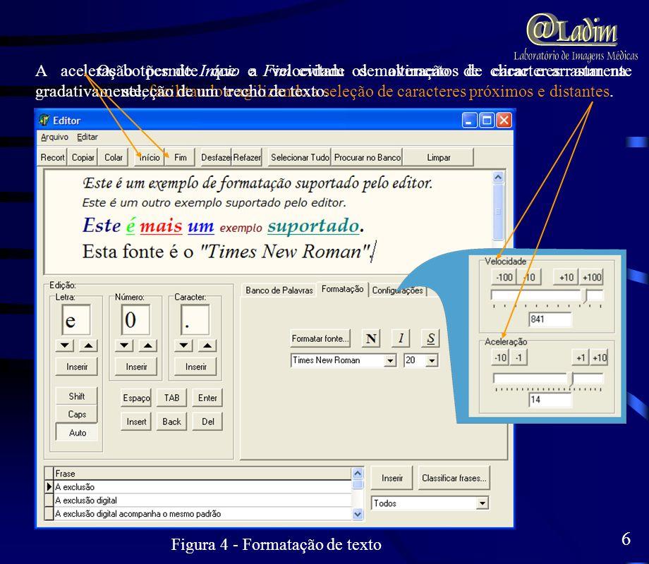 Figura 4 - Formatação de texto