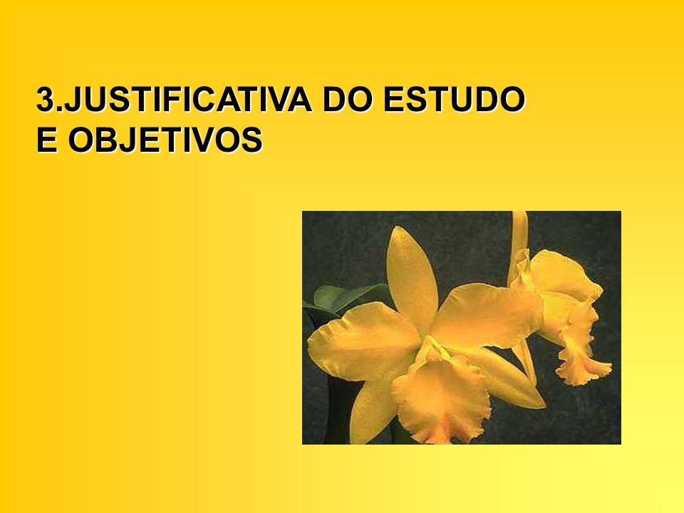 3.JUSTIFICATIVA DO ESTUDO