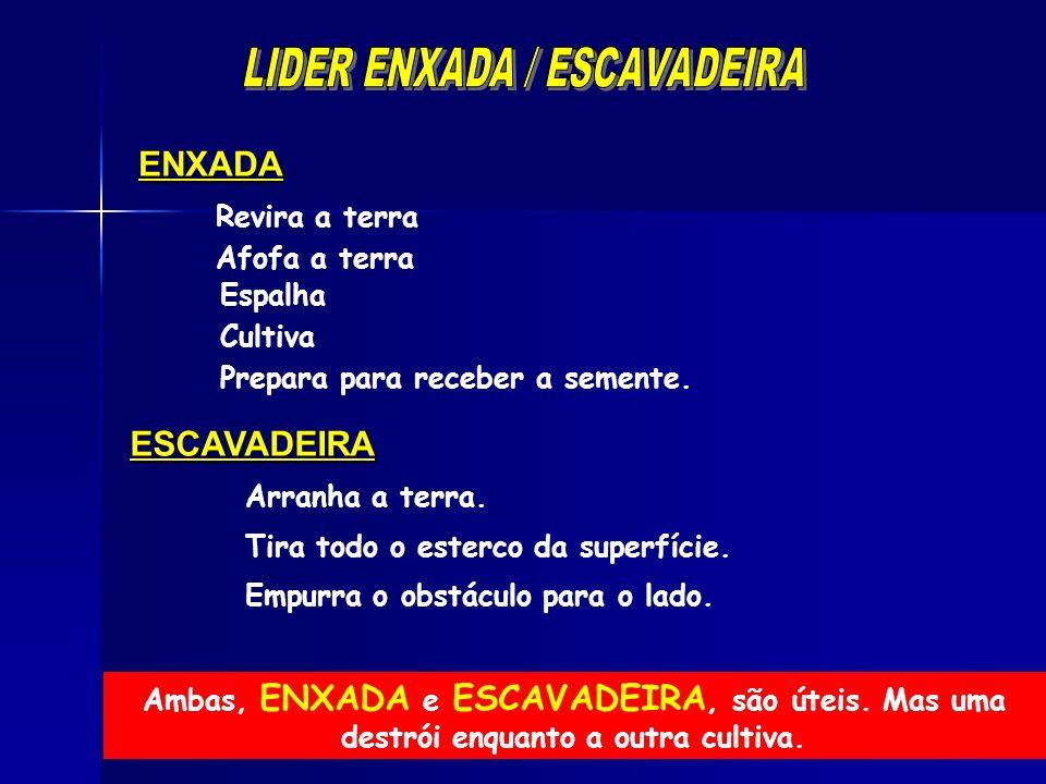 LIDER ENXADA / ESCAVADEIRA