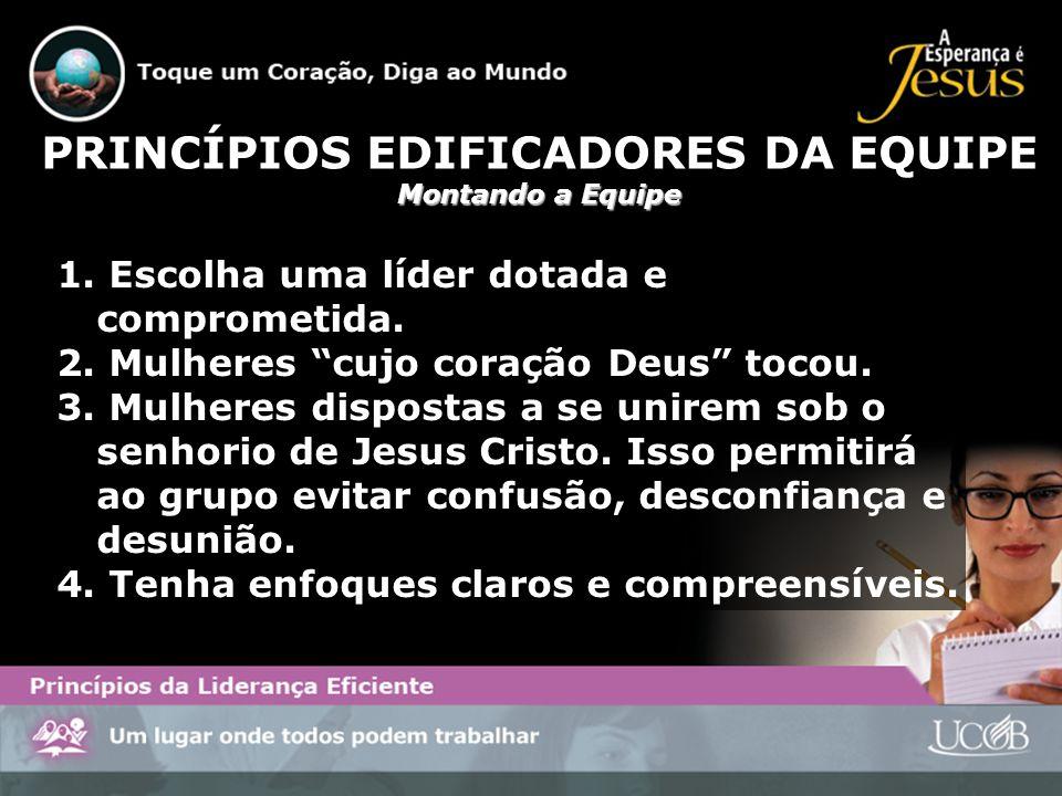 PRINCÍPIOS EDIFICADORES DA EQUIPE
