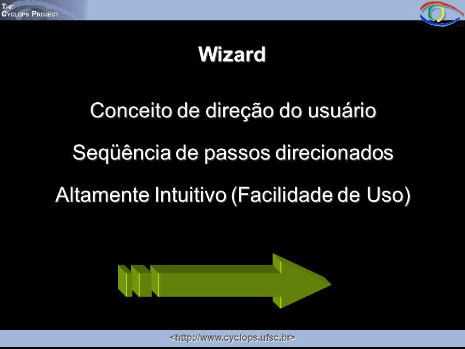 Conceito de direção do usuário Seqüência de passos direcionados