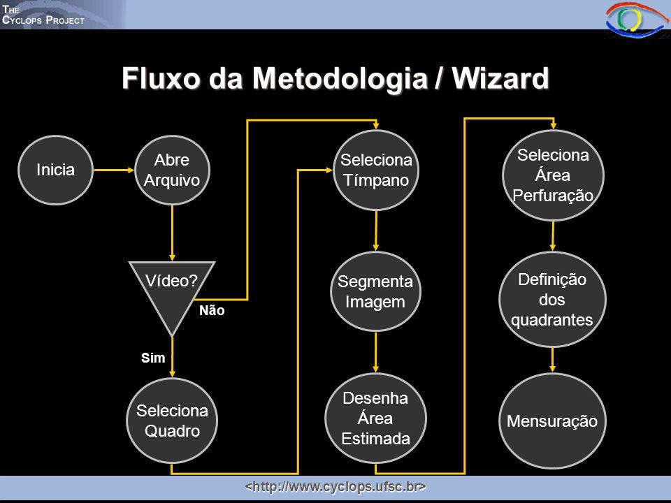 Fluxo da Metodologia / Wizard
