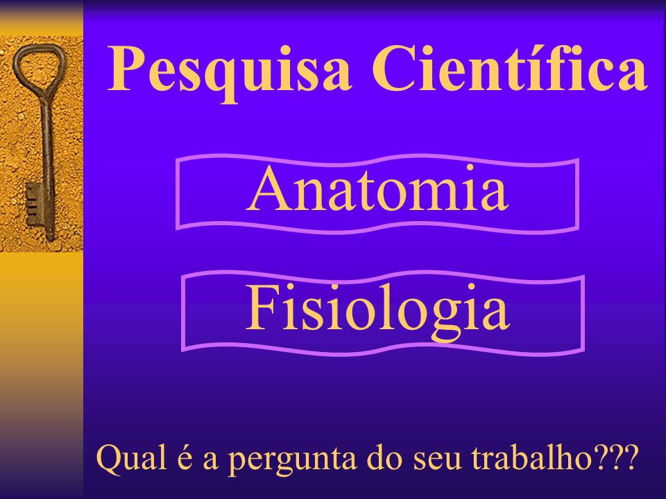 Pesquisa Científica Anatomia Fisiologia
