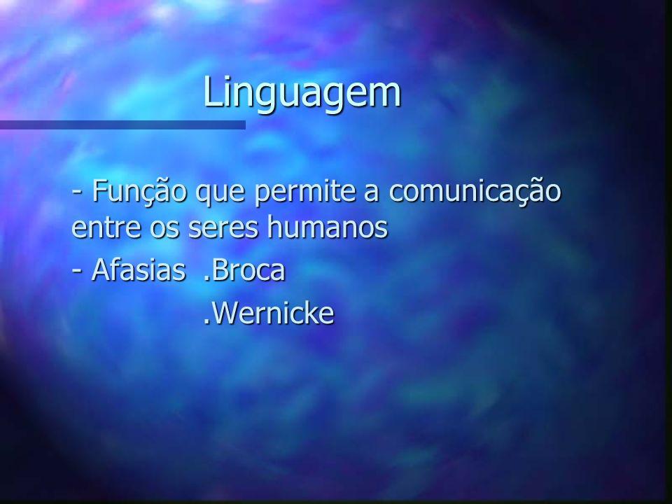 Linguagem - Função que permite a comunicação entre os seres humanos