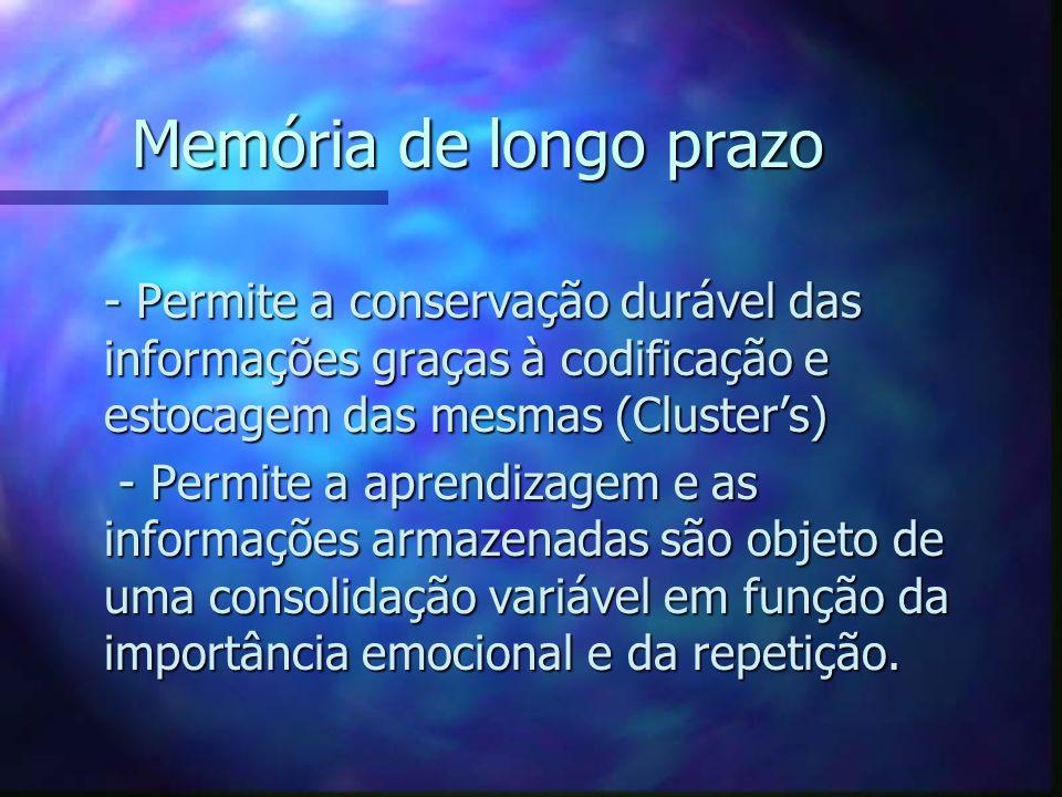 Memória de longo prazo - Permite a conservação durável das informações graças à codificação e estocagem das mesmas (Cluster's)
