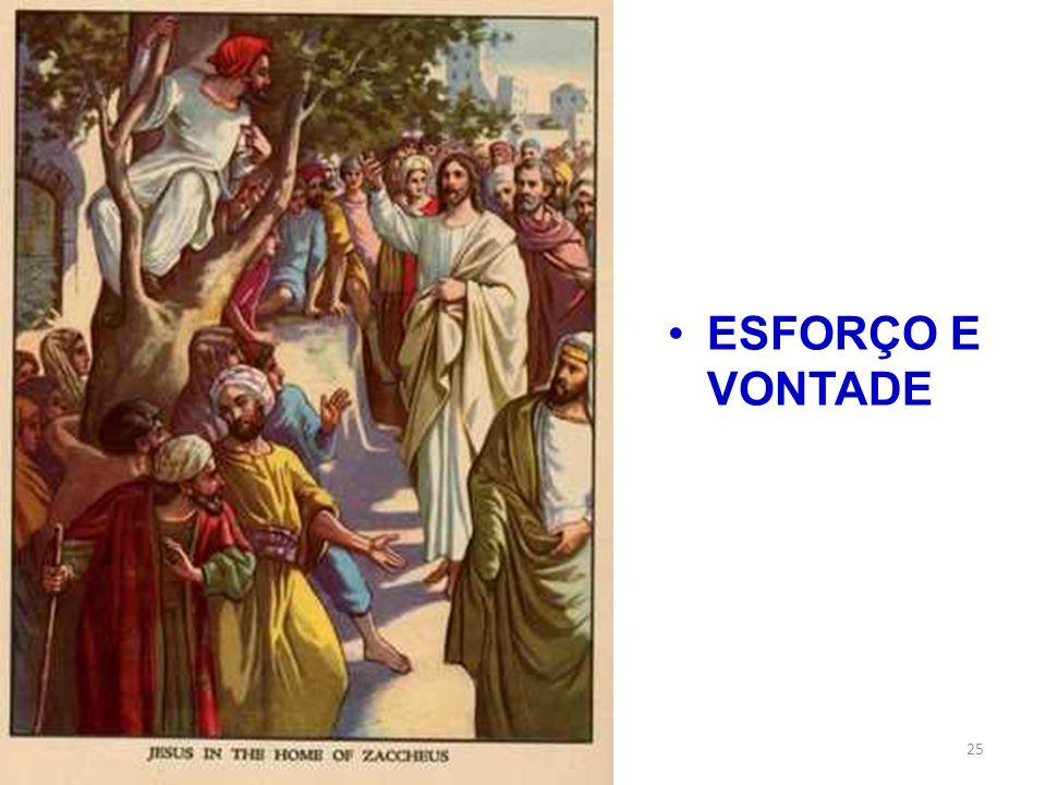 ESFORÇO E VONTADE