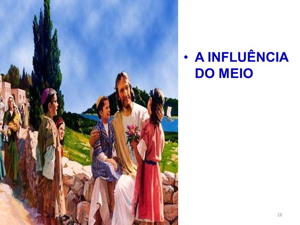 A INFLUÊNCIA DO MEIO