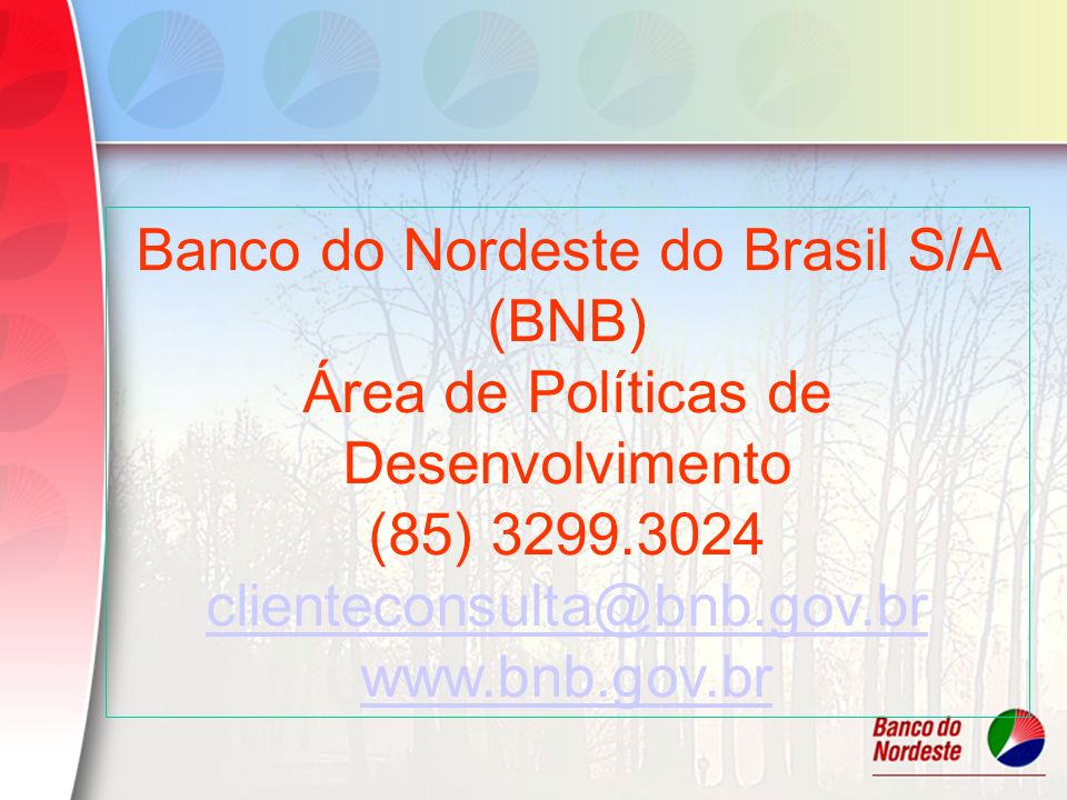 Banco do Nordeste do Brasil S/A (BNB)