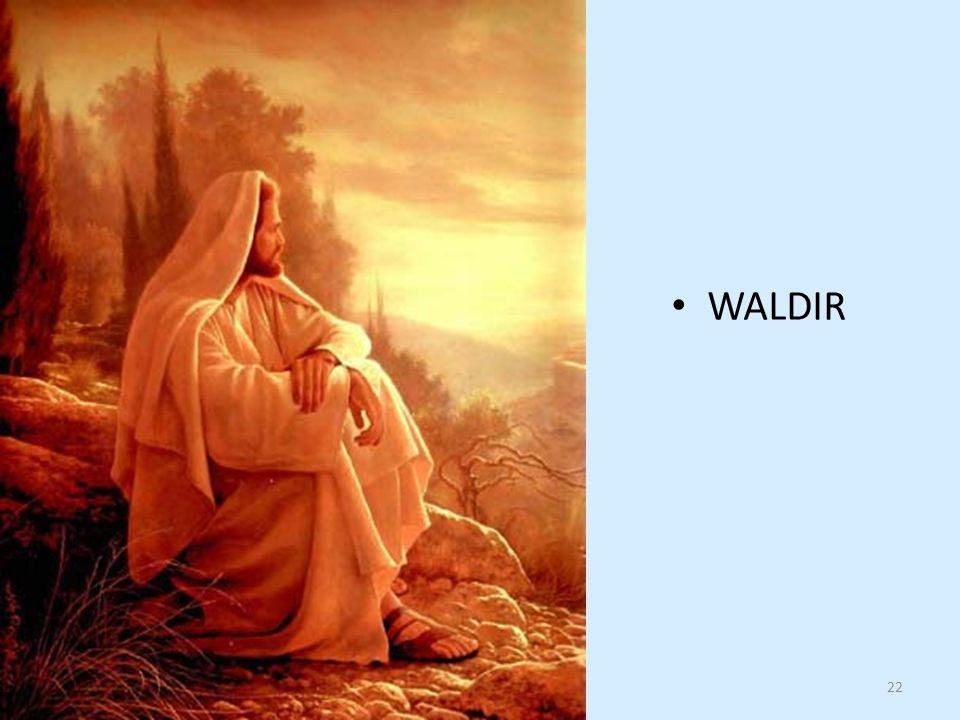 WALDIR