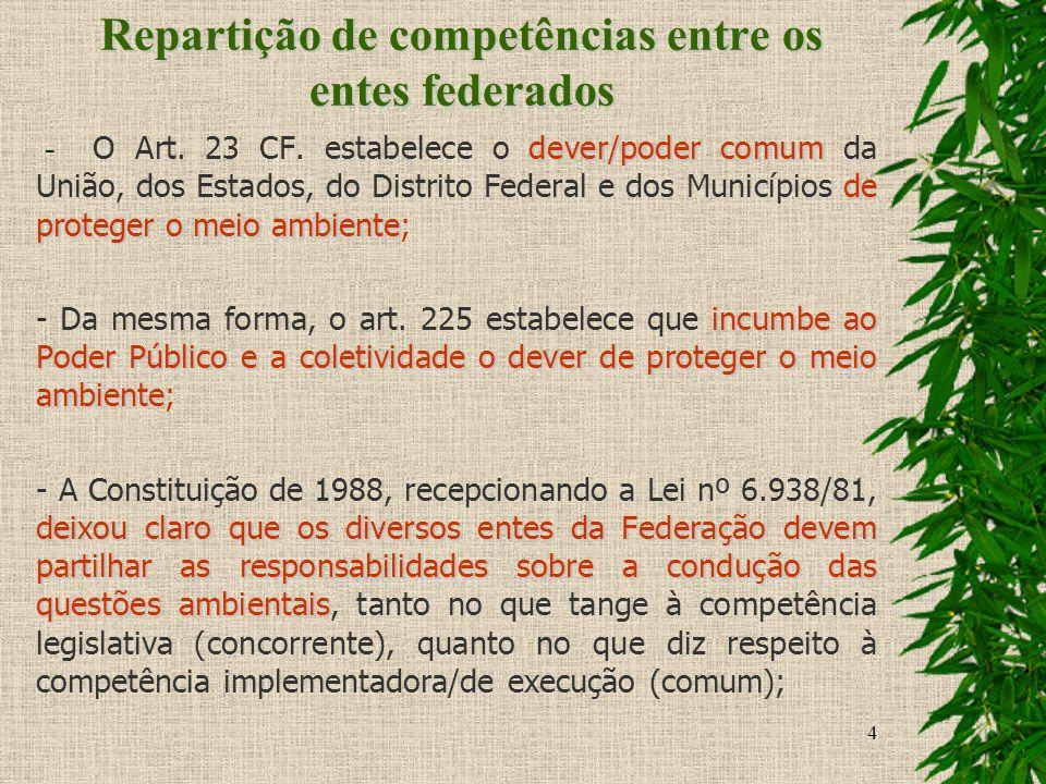 Repartição de competências entre os entes federados