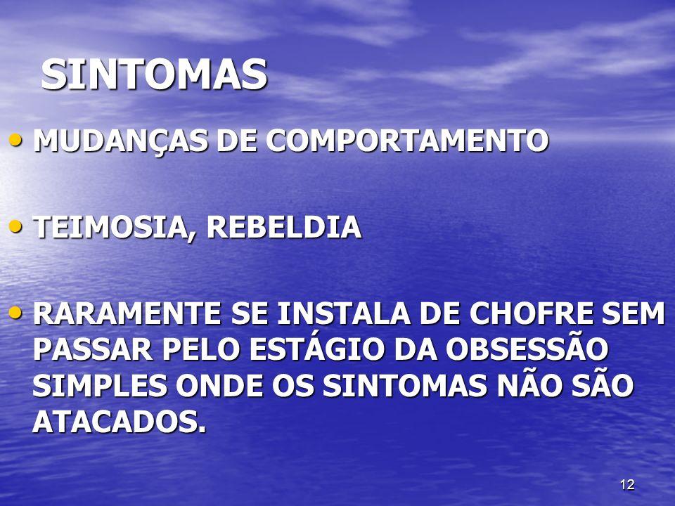 SINTOMAS MUDANÇAS DE COMPORTAMENTO TEIMOSIA, REBELDIA