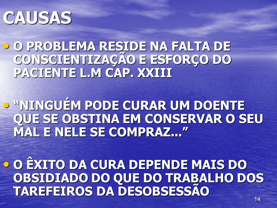 CAUSAS O PROBLEMA RESIDE NA FALTA DE CONSCIENTIZAÇÃO E ESFORÇO DO PACIENTE L.M CAP. XXIII.