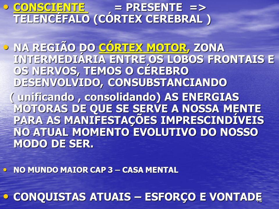 CONSCIENTE = PRESENTE => TELENCÉFALO (CÓRTEX CEREBRAL )