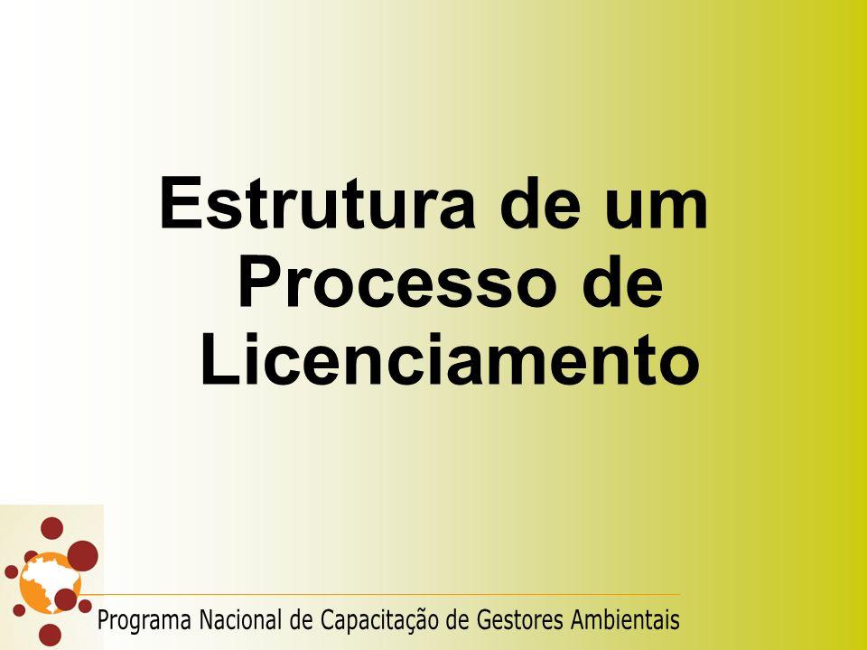 Estrutura de um Processo de Licenciamento