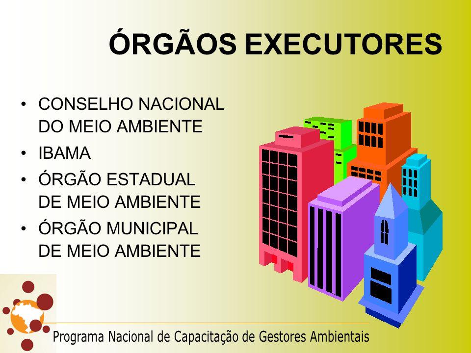 ÓRGÃOS EXECUTORES CONSELHO NACIONAL DO MEIO AMBIENTE. IBAMA. ÓRGÃO ESTADUAL DE MEIO AMBIENTE.