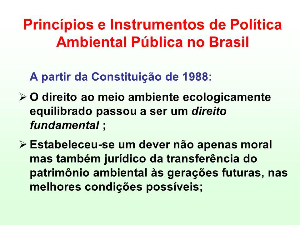 Princípios e Instrumentos de Política Ambiental Pública no Brasil