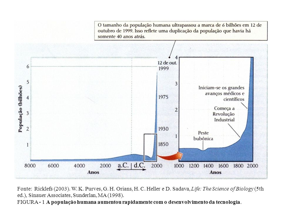 Fonte: Ricklefs (2003). W. K. Purves, G. H. Orians, H. C. Heller e D
