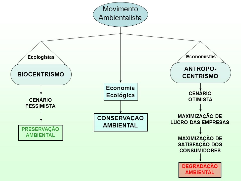 Movimento Ambientalista ANTROPO- BIOCENTRISMO CENTRISMO Economia